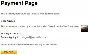 Payment page example